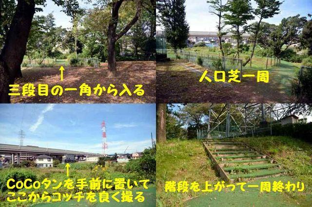 JPG_1801.jpg